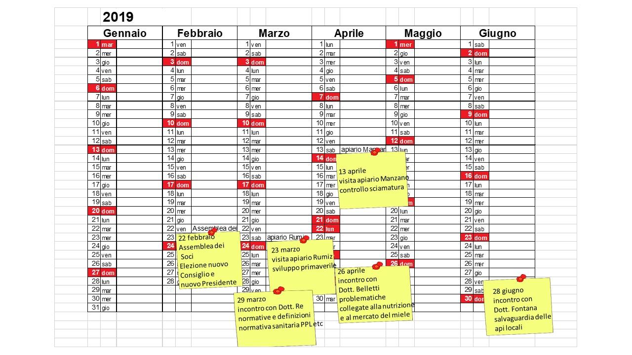 Calendario Attivita.Calendario Attivita 2019 Associazione Per L Ape Carnica