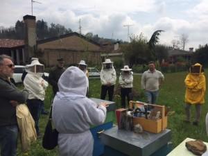 visita apiario Manzano